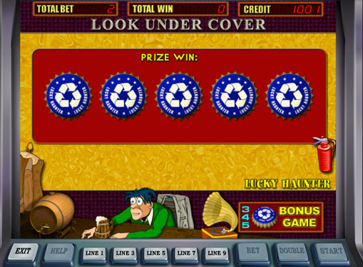 Bonus game of pokies Lucky Haunter