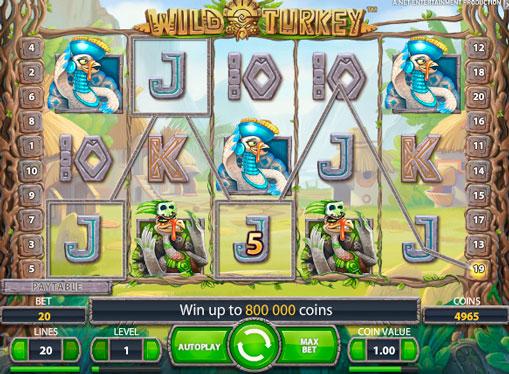 Pokies machine Wild Turkey for real money