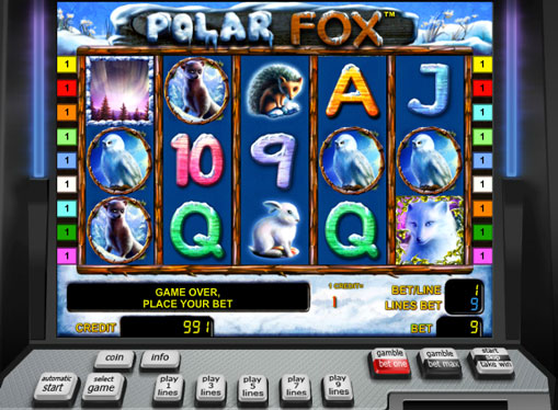 Polar Fox play the pokies online