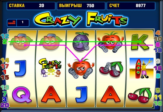 The reels of pokies Crazy Fruits